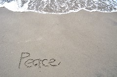 Peace Written in the Sand (Refocus Photography) Tags: ocean shells beach water writing outdoors sand rocks peace background wave foam write written myrtlebeach20101