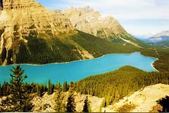 Peyto Lake Banff NP - by swisscan