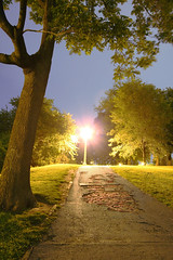 """History Revealed"" (Lincoln Park at night)"