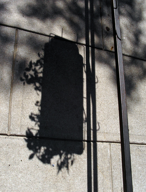 shadow of hanging flower basket
