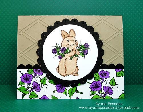 RI Clover Bunny