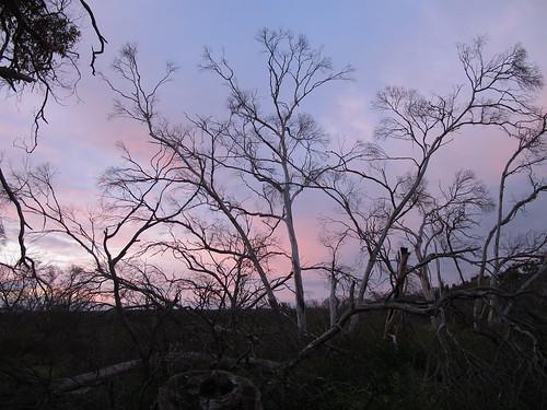 Sonnenuntergang auf Kanguroo Island