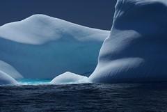 Blue on blue (Jean Knowles) Tags: newfoundland arr iceberg geotag theeye allrightsreserved wildland awardwinner blueribbonwinner flickrtastic newfoundlandandlabr