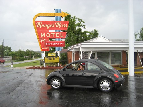 Phoebe at the Munger Moss Motel