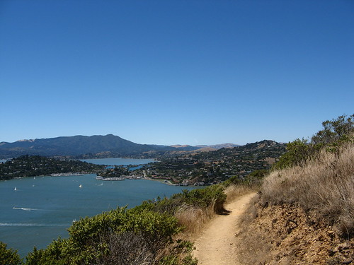 Mount Tamalpais in the distance