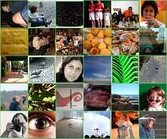 My 2007 Daily Photo Diary - Junho
