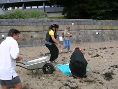 CORSARIO LUDICO 2007 - 099