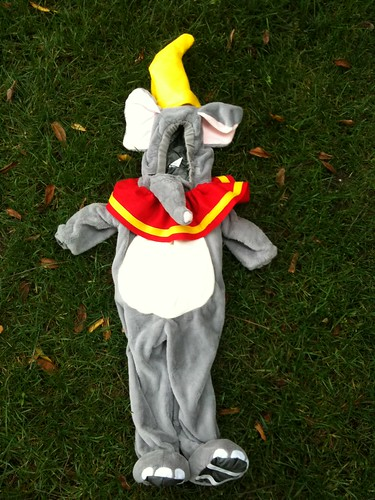 Dumbo costume all done