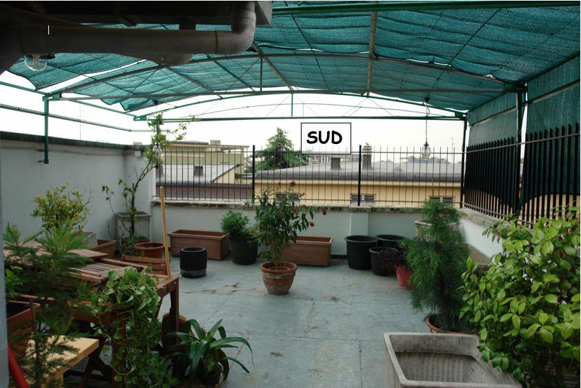 Progetto terrazzo esposto a sud - Milano