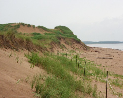 Dunes in PEI National Park by tlbcml.