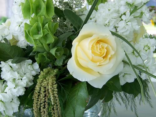 Burpee Bouquet