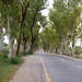 Road to Abbotabad 1, Pakistan