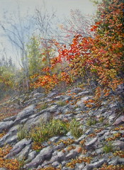 """Misty Autumn"" an acrylic painting (Elizabethc) Tags: autumn trees red orange brown art fall grass leaves yellow sticks artwork weeds rocks artist stones michigan branches rocky hills hillside battlecreek elizabethcrabtree crabtreeoriginals"