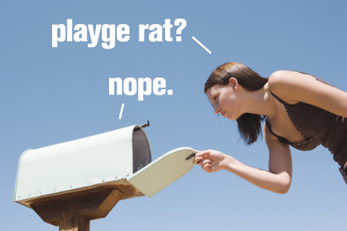 PLAYGE RAT - PLAYGE VERSION - Page 5 5120851868_7082d4e7d7