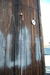 Phone pole tagging (vosh.) Tags: graffiti traces ward kakaako