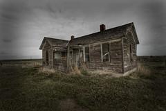 forgotten homestead 2