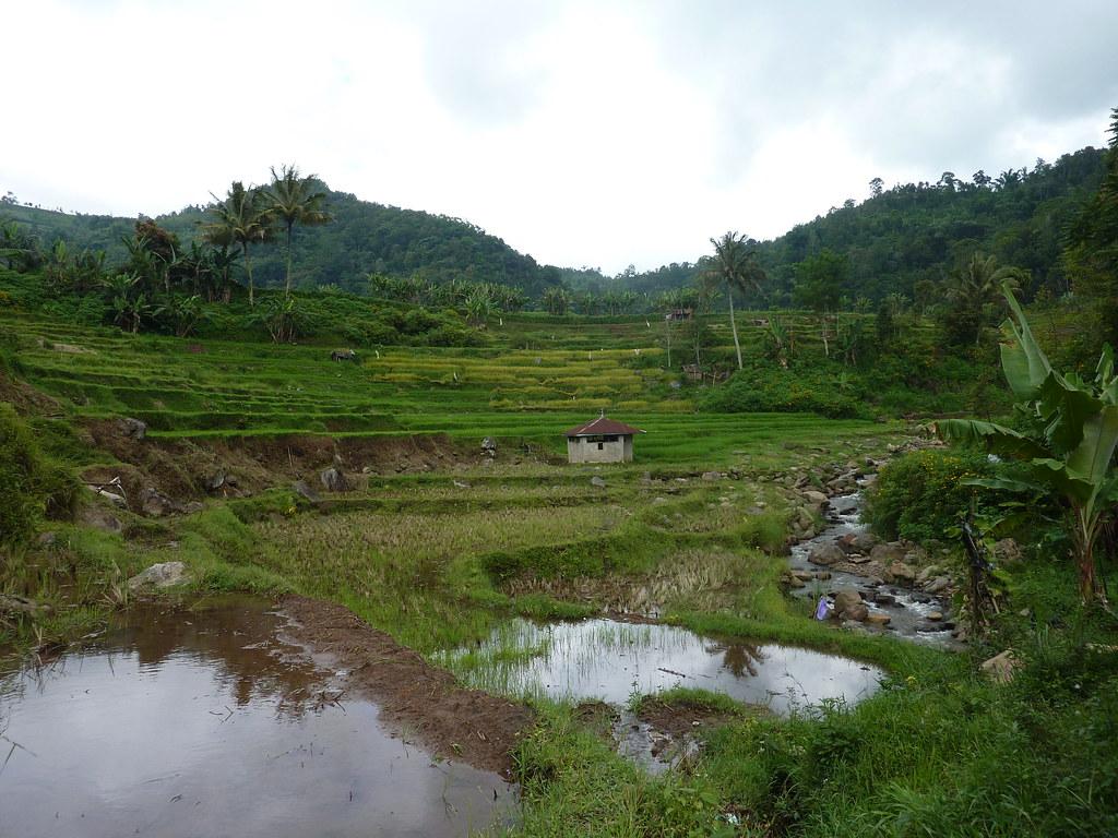 Sumatra-Bukittinggi (171)