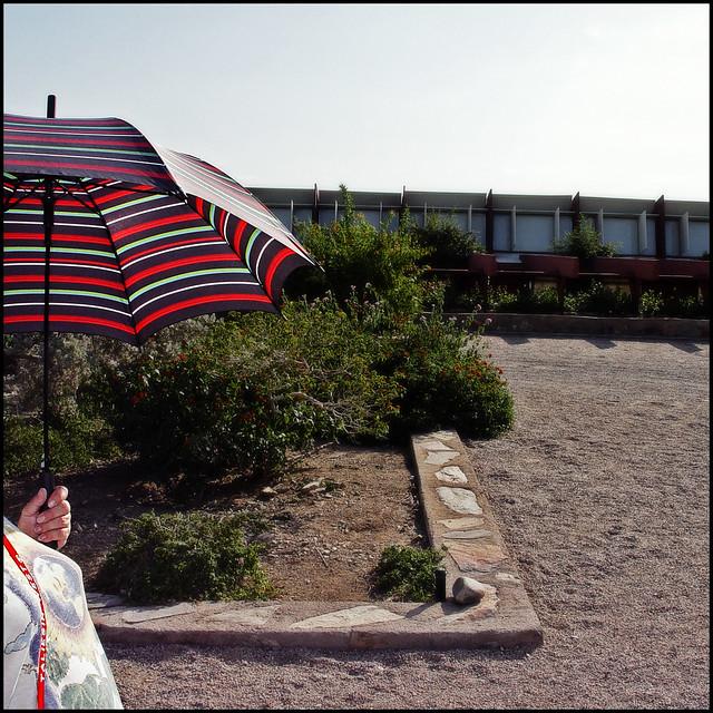 Taliesin West Umbrella