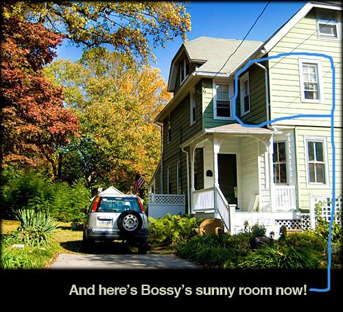 bossys-sunny-room