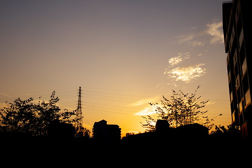20101107 夕暮れ