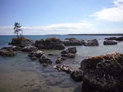 Solitary Tree (lijewski) Tags: sky tree beach water rocks stones michigan narnia upperpeninsula lakehuron cedarcampus narniatrail