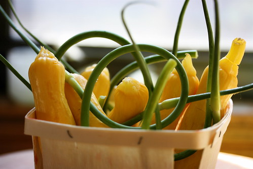 Summer Squash and Garlic Scapes