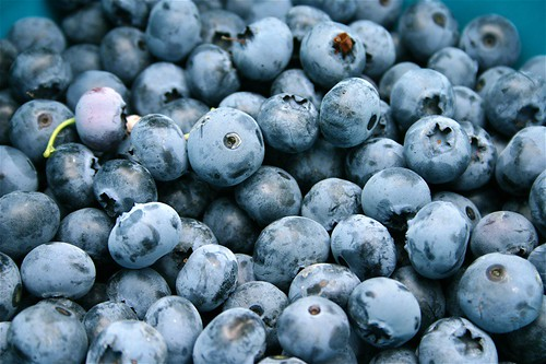 Blueberries really are blue