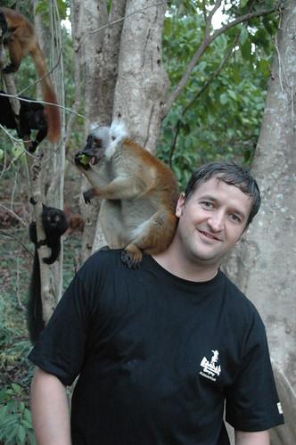 Louis & Lemur-3