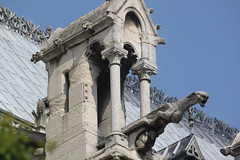 Notre Dame Cathedral in Paris (Hazboy) Tags: paris france church frankreich europa europe cathedral gothic goth kirche notredame gargoyle frankrijk francia chimera kerk eglise francie gargouille kirk parijs frankrig parigi frankrike wasserspeier francja dekoracja   hazboy hazboy1 chrli