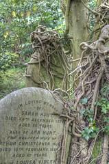 Highgate Cemetery HDR