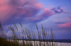 To You (Mona Hura) Tags: pink sea white gulfofmexico clouds sand florida horizon sugar tomorrow promise toc pensacolabeach 9716 imblowingkissesinthebreeze