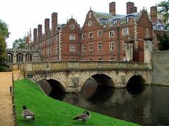 Cambridge (91)
