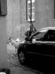 Woman with a goat (Margit7) Tags: street city car animal town estonia goat oldwoman filmset eesti kuressaare saaremaa ruudi allfilm betterthangood