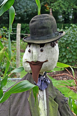scarecrow - by Leo Reynolds
