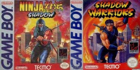 NinjaGaidenShadow