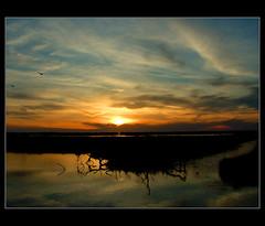 sardegna (fringuellina) Tags: sardegna sunset sky sun pool sarah tramonto nuvole cielo sole italians arborea stagno superaplus aplusphoto senaarrubia holidaysvacanzeurlaub excellentphotographerawards fringuellina theperfectphotographer mcb1604