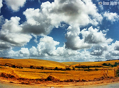 . Somewhere in Alagoas (Omar Junior) Tags: blue sky color colors yellow clouds contrast cores landscape high pentax d paisagem cu fisheye junior nuvens omar ist pentaxistd alagoas olhodepeixe 17mm dajanela hc