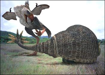 doedicurus fighting with phorusrhacos