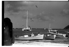 los roques catamaran and boads (nomade at the busstop) Tags: bw dog white black los venezuela caracas perro tortuga roques comedor