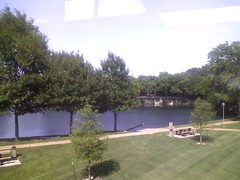 Office Pond