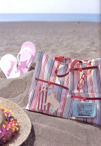 Vinyl Beach Bag