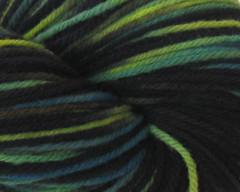 Aurora Australis Bulky Rambouillet - 4 oz (WW)
