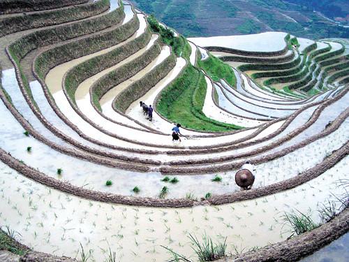 Longsheng-(China)
