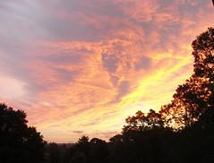 Summer Sunset a (mcnally3357) Tags: trees sunset clouds treeline