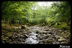 Ucieda (Cantabria) (Manuel Gutierrez) Tags: naturaleza rio arboles bosque cantabria ucieda