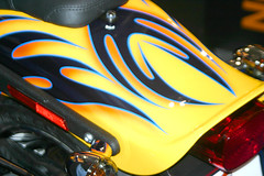 HD_RearFender1 (dellwood33) Tags: paint murals motorcycles custompaint scottishshow trickpaint