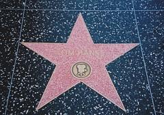 Tom Hanks walk of fame star  Hollywood Boulevard