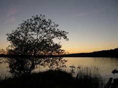 Evening lake (kryshen) Tags: sky lake tree nature silhouette landscape evening russia dusk karelia небо природа россия дерево пейзаж onego вечер озеро flickrstock сумерки карелия онего онежскоеозеро онежское