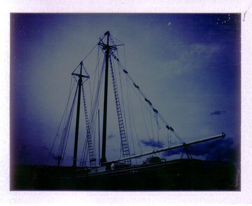 polaroid-24.jpg