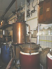 Small stills at van Wees Distillery,Jordaan Area,Amsterdam